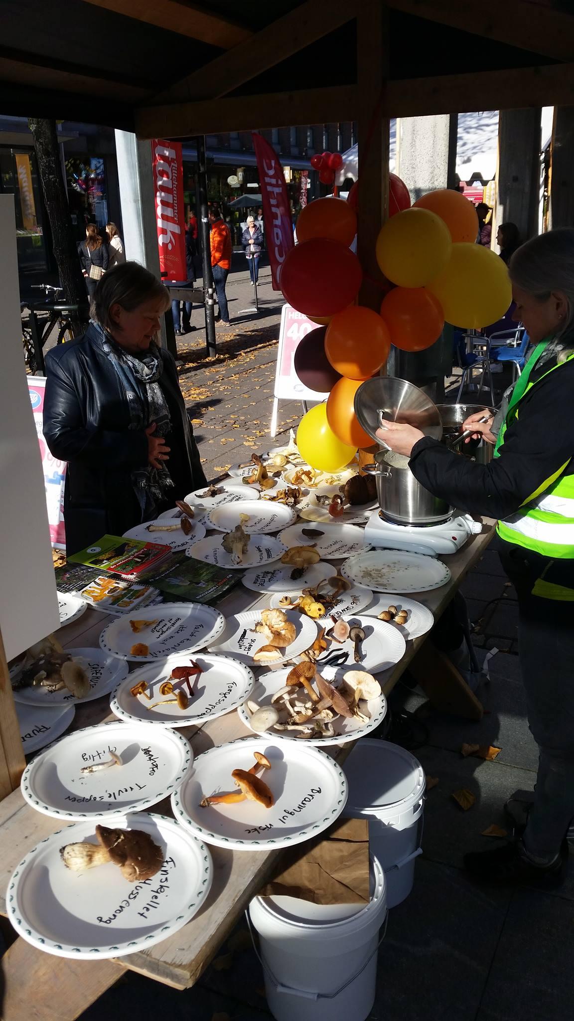 Soppkontroll, Mataukfestivalen, Lillehammer sopp- og nyttevekstforening